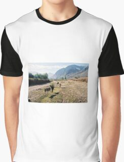 Nubra valley Graphic T-Shirt