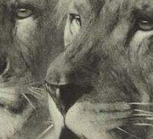 Vintage Lion & Lioness Portrait Sticker
