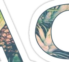 Alpha Phi - Pineapple Sticker