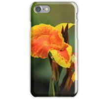 Yellow and Orange Petals iPhone Case/Skin