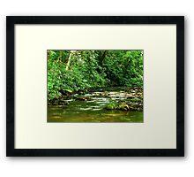 Cataloochee Creek III Framed Print