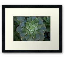 The Green Flower Framed Print