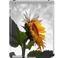 EMERGING COLOR  iPad Case/Skin
