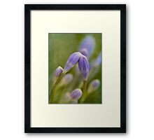 You must remember this, a kiss is just a kiss, a sigh is just a sigh Framed Print