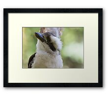 The Daily Blessing Of Spike Framed Print