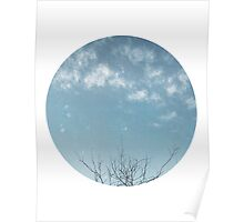 Winter tree against the Texas Sky Poster