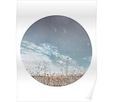 Texas Field in Winter Poster