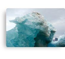 Natural ice sculpture Canvas Print