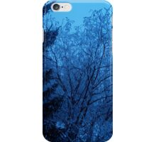 Winter Morning iPhone Case/Skin