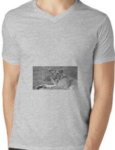 """queen of the savanna"" Mens V-Neck T-Shirt"