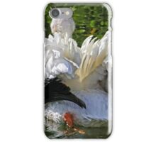 The South End Of A Northbound Bird iPhone Case/Skin