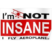 I Fly Aeroplanes Poster