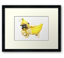 Pug Banana Watercolor Framed Print