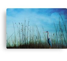 Blue without you ... Canvas Print