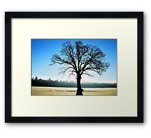 The old hero standing out straight on a bright and cold morning Framed Print