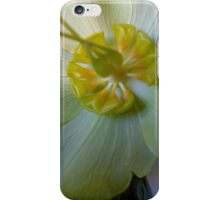 Lovely creation of nature iPhone Case/Skin