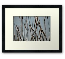 Within The MAtrix Framed Print