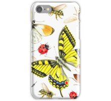 set of watercolor insects iPhone Case/Skin