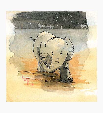 Elephant sketch Photographic Print