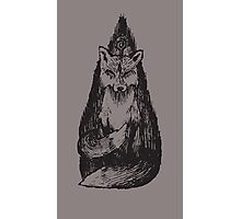 Two-Tailed Photographic Print