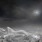 The Snow Queen Dreams by Igor Zenin