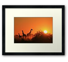 Giraffe Silhouette - African Wildlife Background - Going to the Sun Framed Print