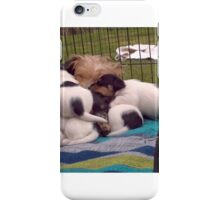 Roxy, her babies and big brother Dexter iPhone Case/Skin