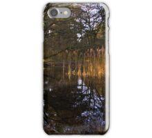 Wokefield Pond, 2 iPhone Case/Skin