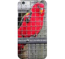 Things Every Successful Person Has In Common iPhone Case/Skin
