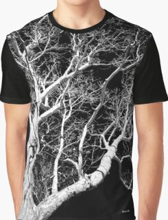 Black and White Tree III Graphic T-Shirt