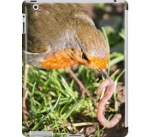 A Robin's Slippery Meal iPad Case/Skin