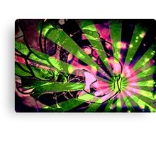 Burst Of Magic Canvas Print