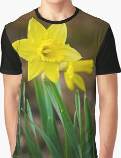 Beautiful Daffodils Graphic T-Shirt