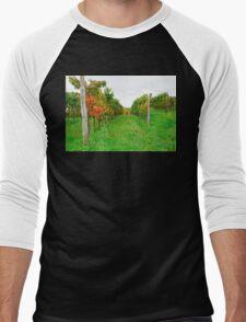 Autumn Grape Vines Near Abbazia Rosazzo Men's Baseball ¾ T-Shirt