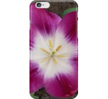 Purple tulip showing a bright heart iPhone Case/Skin