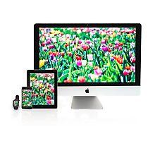 Multiscreen - Apple Watch, iPhone, iPad and iMac screens  Photographic Print