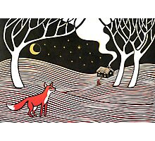 Stargazing - Fox in the Night Photographic Print