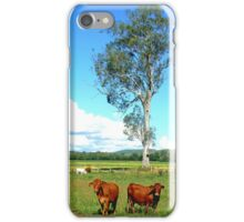 Two Alert Brown Cows iPhone Case/Skin