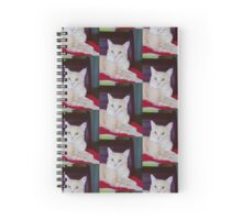 "When I say ""Meow"", you say ""how high"" Spiral Notebook"