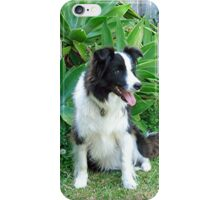 Ollie & Izzy - Of course we are the best of friends........!! iPhone Case/Skin