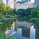 Central Park by Aase