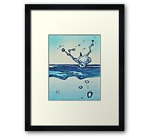 Make A Splash,  Framed Print