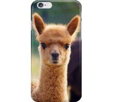 Cute Baby Alpaca iPhone Case/Skin