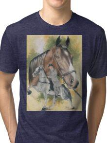 Tennessee Walking Horse Tri-blend T-Shirt