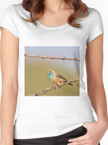 Blue Waxbill - African Wild Bird Background - Bliss of Colors in Nature Women's Fitted Scoop T-Shirt