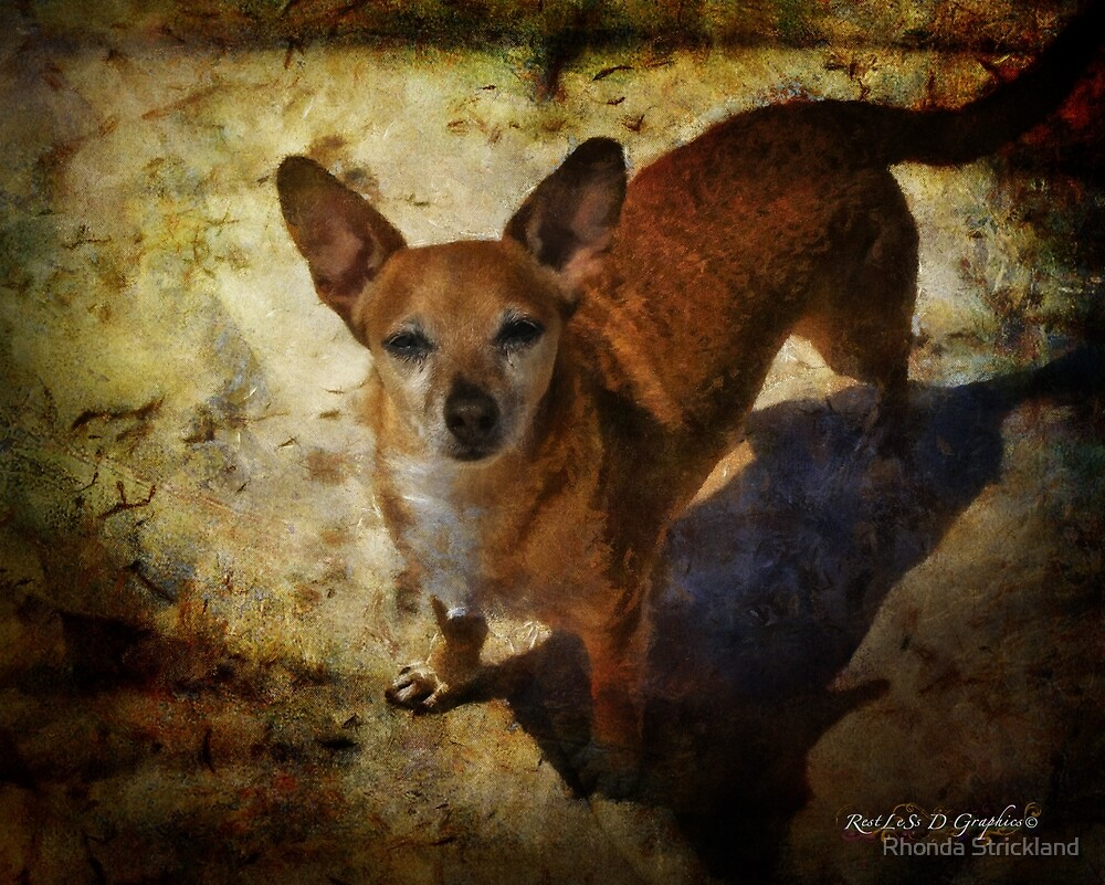 Sir Peanut by Rhonda Strickland
