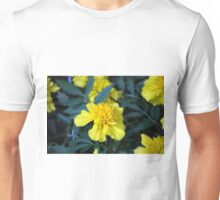 Spring Flower Series 4 Unisex T-Shirt