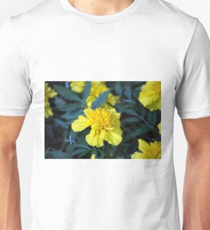 Spring Flower Series 4 Unisex T-Shirt
