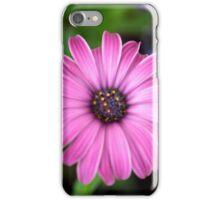 Spring Flower Series 1 iPhone Case/Skin