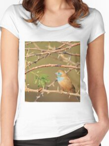 Blue Waxbill - Exotic Colorful Wild Birds from Africa - Sharp Beauty Women's Fitted Scoop T-Shirt